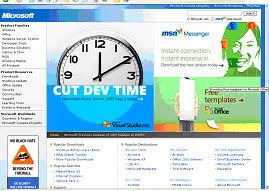 Microsoft Best of the Web 2005 3