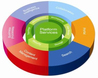 SharePoint Platform Visual Representation