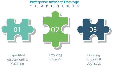 Large Enterprise Intranet Package Components