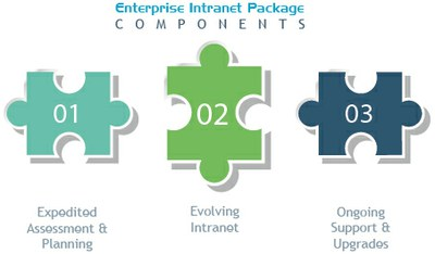 Large Enterprise Intranet Package Components